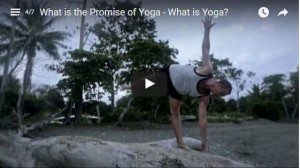 What is the Promise of Yoga – What is Yoga?