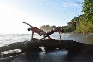 What Makes A Yogi A Yogi?